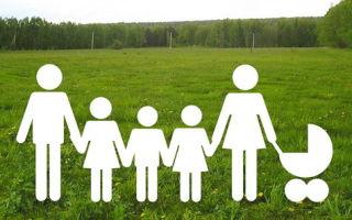 Земельный участок многодетным семьям: порядок предоставления земли, список документов