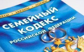 Как подать на алименты в браке: какие нужны документы, куда обращаться?