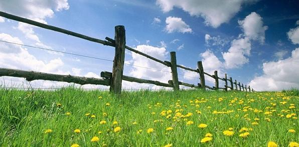 Земельный участок молодой семье: как встать на очередь и получить землю от государства?