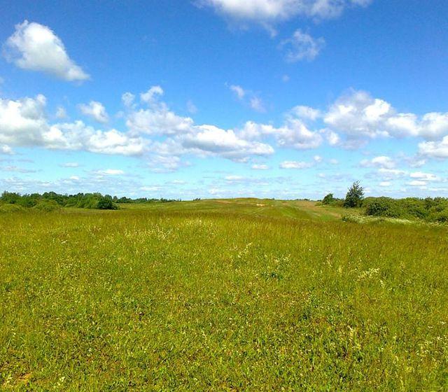 Как оформить землю в собственность: порядок проведения процедуры, регистрация права, с чего начать?