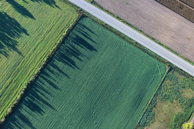 Что такое обременение земельного участка и как снять ограничение использования в Росреестре?
