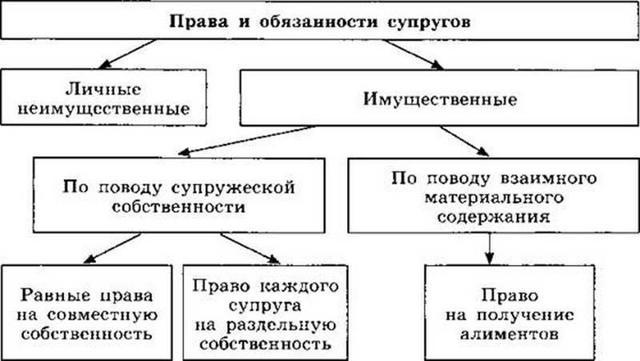 Права и обязанности супругов после заключения брака по Семейному Кодексу РФ