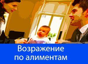 Возражение на исковое заявление об уменьшении размера алиментов на ребенка: образец документа