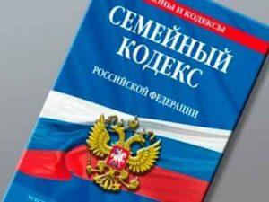 Как лишить родительских прав отца без его согласия в России (в одностороннем порядке)?